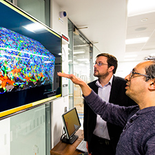 Researchers looking at a screen in the MCF